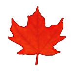 Industry Canada's Small Business Internship Program